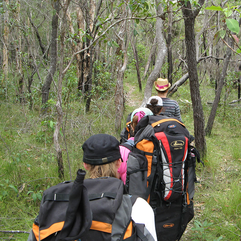 camp-activity-bush-navigation